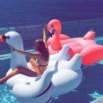 colchoneta cisne gigante