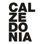 black friday calzedonia